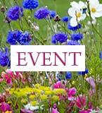 event LMDF